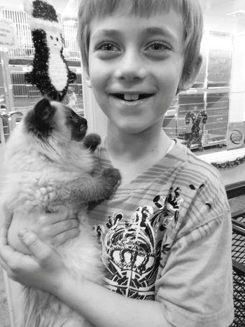 Kid Kitten Petstore