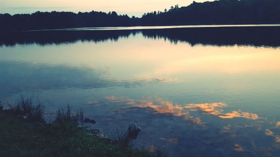 Tree Water Lake Forest Sunset Reflection Mountain Sky Landscape Grass