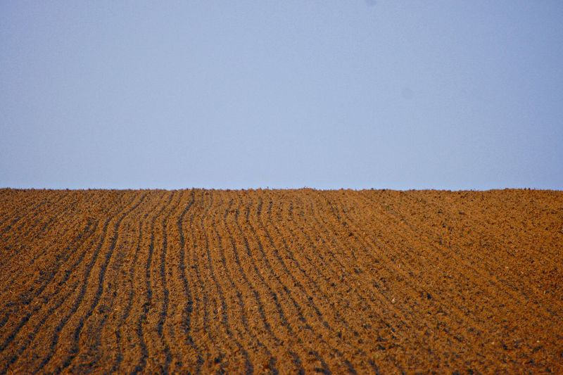 Scenic View Of Plowed Field Against Blue Sky