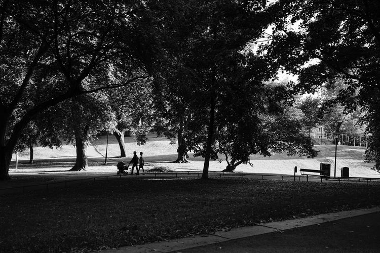 Street Photography Monochrome Family SONY A7ii Sony FE 35mm F2.8