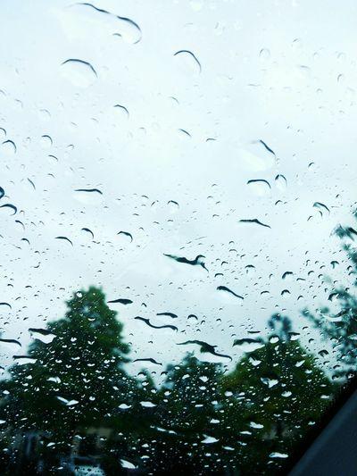 Rain Rainy Day Water Droplets Window Sheild