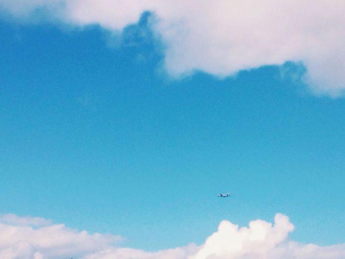 Amazing Blue Sky Plane Novosibirsk