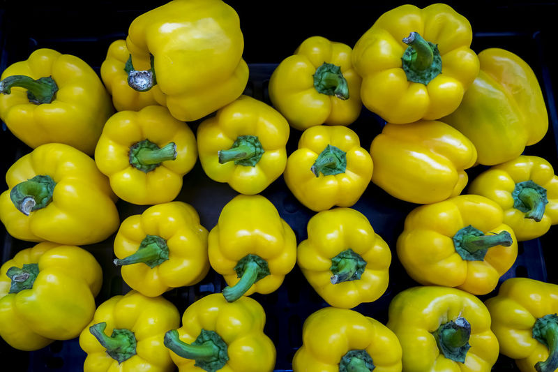 Fresh yellow capsicum display for sale in supermarket Abundance Close-up Day Food Food And Drink For Sale Freshness Healthy Eating Indoors  Large Group Of Objects Market No People Red Bell Pepper Retail  Vegetable Yellow