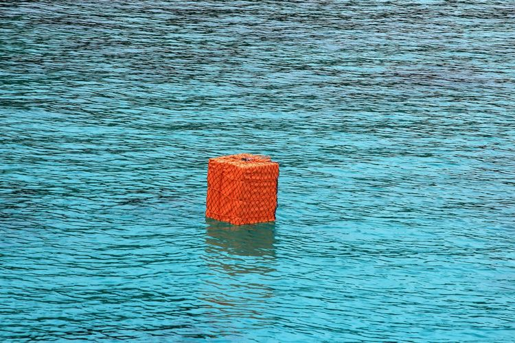 Big Orange Float Big Buoy Beauty In Nature Blue Blue Water Buoy Buoys Day Floating Floating On Water Life Jacket Nature No People Ocean Orange Color Orange Floatie Outdoors Protection Red Rippled Safety Sea Security Tranquility Water Waterfront