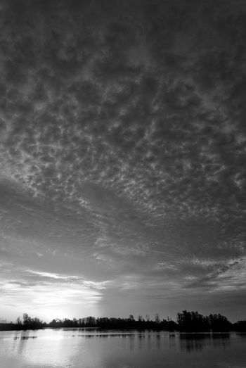 I love clouds at sunrise! Cloudscape Dramatic Sky Atmospheric Beauty In Nature Black And White Clouds And Sky Clouds And Water Dramatic Horizon Lake Morning Sunlight Nature No People Outdoors Reflection Scenics Sky Sunrise Sunset Tranquil Scene Tranquility Tree Water Waterfront Wide Angle