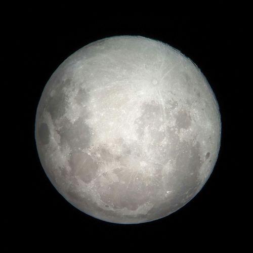 Moom Celestron Luna Telescope Telescopio