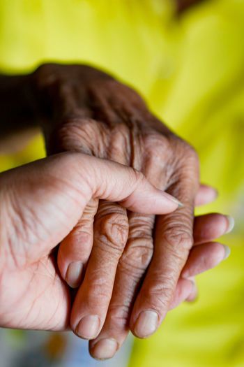 Close-up of female holding grandparent hand