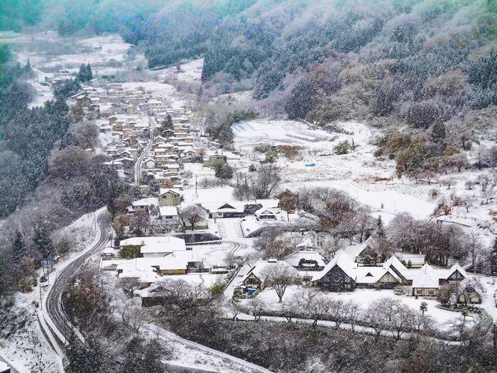 Day Winter Snow