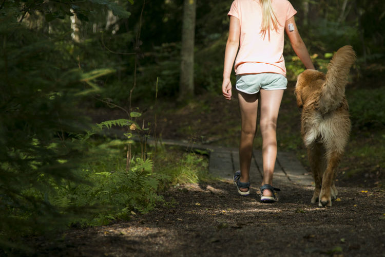 Low Section Of Woman By Golden Retriever Walking On Footpath