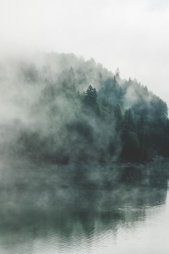 Lake view, with fog in forest. My Best Photo Fog Sky Tranquility No People Scenics - Nature Beauty In Nature Nature Environment Tree Tranquil Scene Water Smoke - Physical Structure Outdoors Day Wood Cloud - Sky Cloud Clouds And Sky Mood Moody Sky Forest Forest Photography Lake View Lake Side