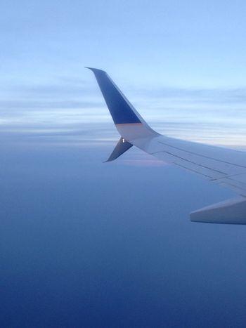 Flights Flightview Flight Wings Flightwindow Traveling Home For The Holidays