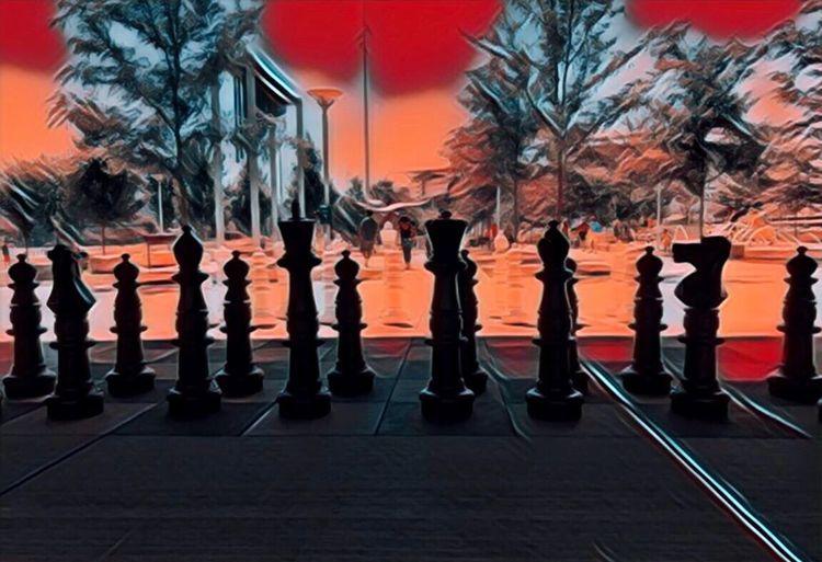 Urban Cincinnati Cincinnati Ohio Cincinnati Design Art Chess Park Tree In A Row Plant Orange Color Nature City Silhouette Outdoors