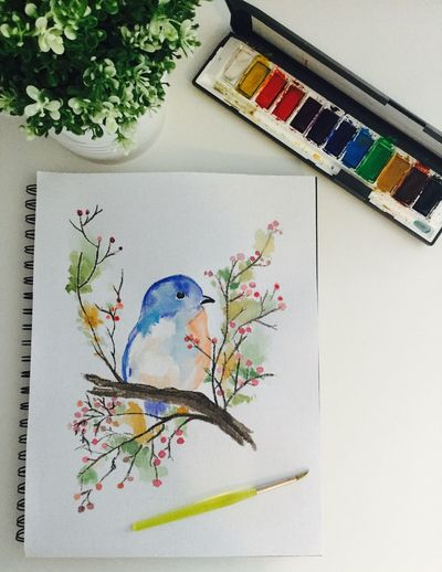 Green Color Drawing - Art Product Paper Indoors  Flower Creativity No People Sketch Pad Close-up Day Paint White Colors Bird Perspective Still Life Composition Photo Photography Design Indoors  Blue Life Arrangement