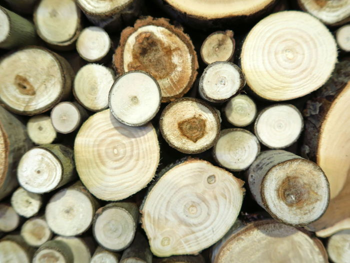 Painting Piles of Wood Large Group Of Objects Full Frame Forest Backgrounds Wood - Material Close-up Abundance No People Stack Wood Wood Piles Piles Of Wood Wood Pile Pile Of Wood Pile Cross Section Sections Section Woodpile Pattern Log Timber Lumber Industry Firewood