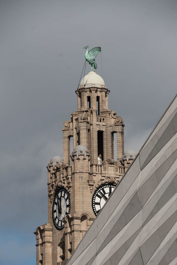 The Liver Building Architecture Built Structure Clock Day High Section Historic Liver Bird Liver Building Liverpool Low Angle View No People Outdoors Sky Skyline Travel Destinations