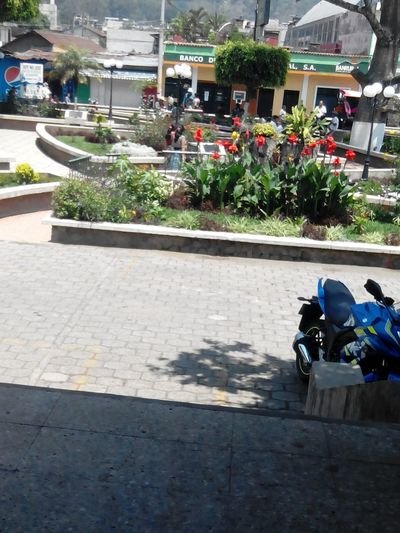 Parque De San Lucas Toliman