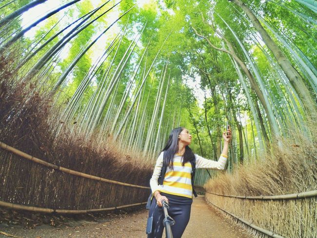 Path of Bamboo. Arashiyama Kyoto Arashiyama Japan Travel Photography Travel EyeEm Japan Adventure Wanderlust