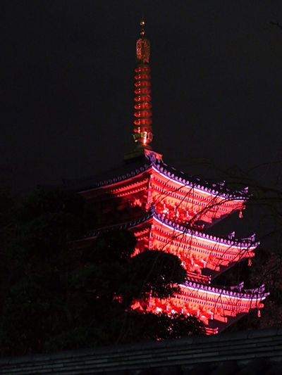 Lightup Event Light Lights Temple Temple - Building Light In The Darkness Japan Photography Japanese Culture JapaneseStyle