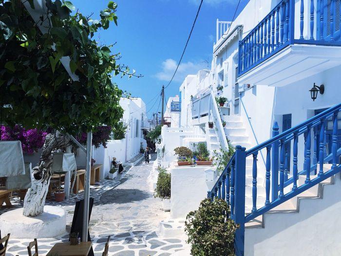 Mykonos Cyclades Mykonos Mykonos,Greece Greece Colourful Greece