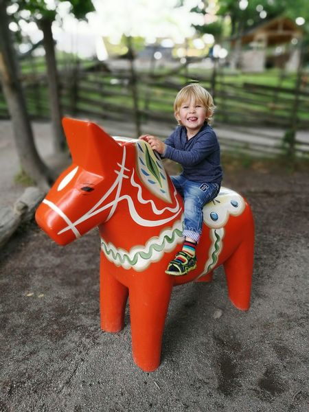 Happy Kid Dalecarlia Wooden Horse Color Portrait Enjoying Life