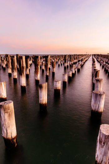Panoramic view of wooden pier posts in row, princes pier, melbourne