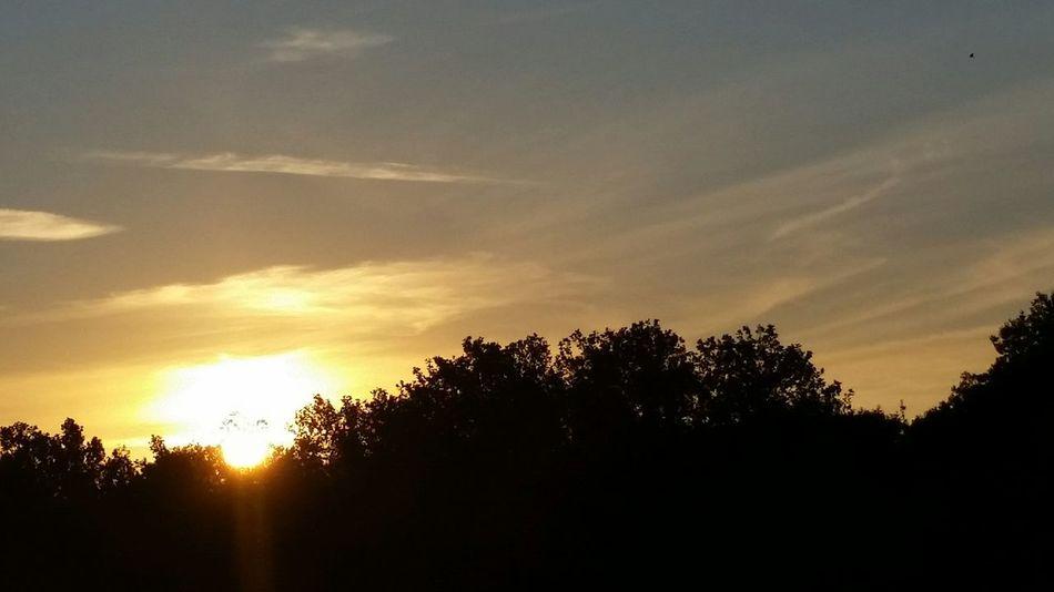 a new dawn, morning glow, ochtendgloren, sun, risingson,