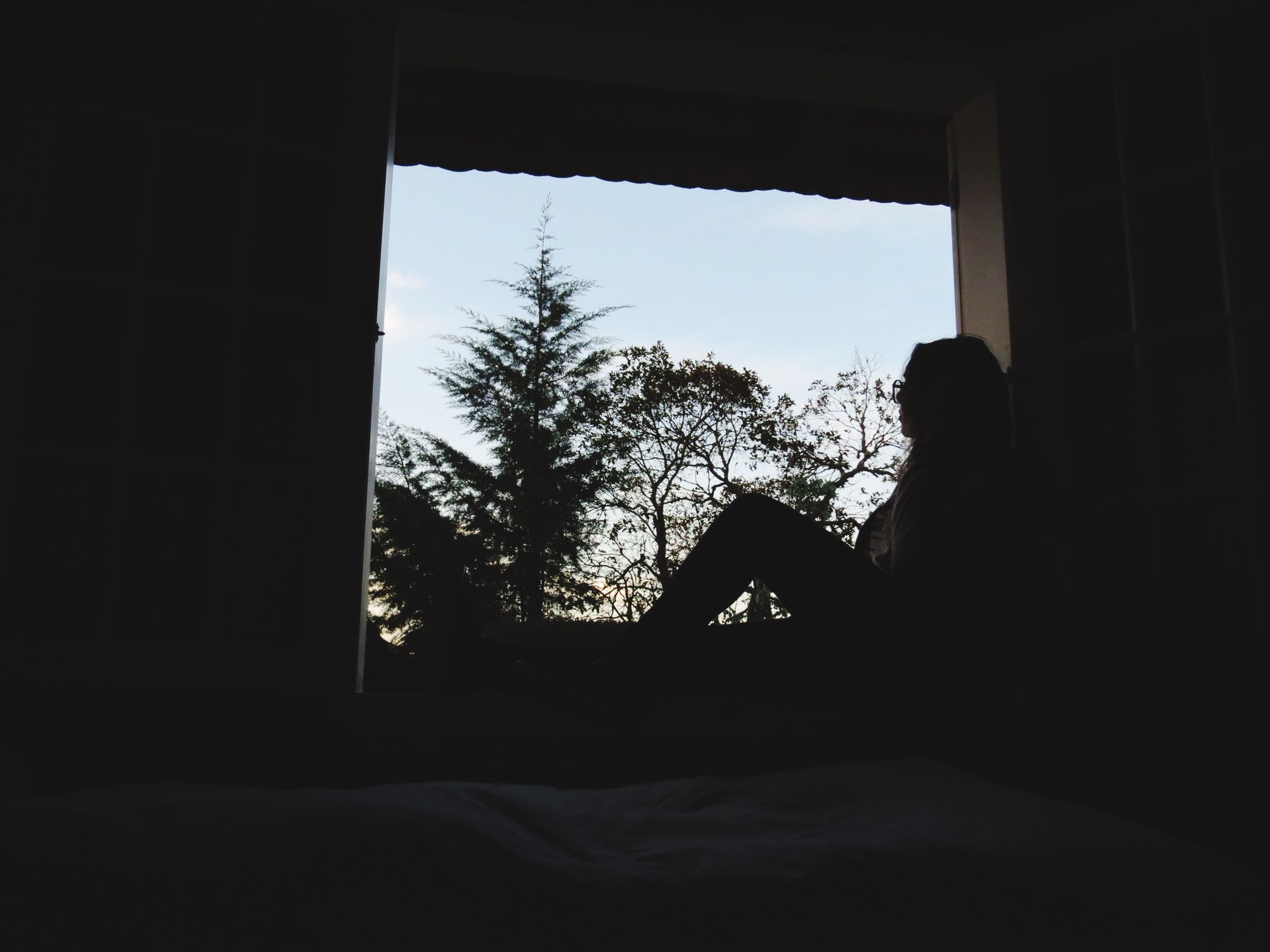 indoors, silhouette, window, tree, dark, sunlight, looking through window, clear sky, home interior, day, sky, copy space, built structure, tranquility, house, nature, architecture, glass - material