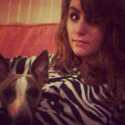 Cuddles with Maggie Moo ♡ Cuddles Maggie Moo Instawhippet cute ilovemydogs loveher zebra onsie howcute iloveher bonding moment cutie whippeters whippet