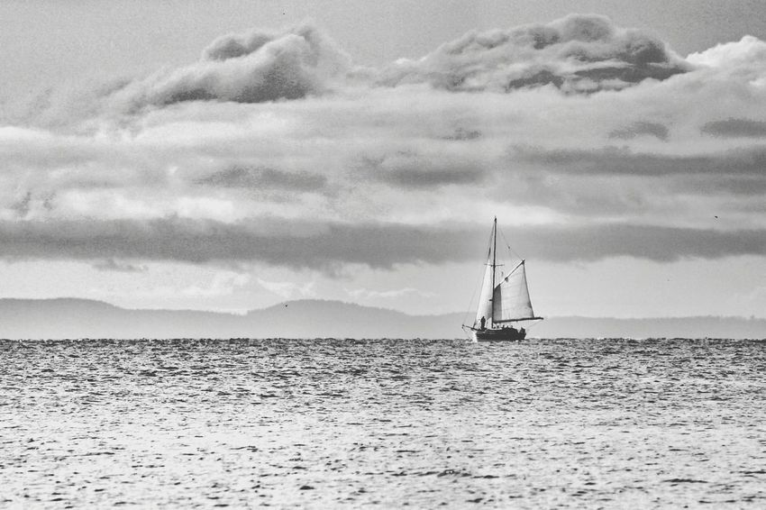 The EyeEm Facebook Cover Challenge Elegance Everywhere Clouds And Sky Black And White