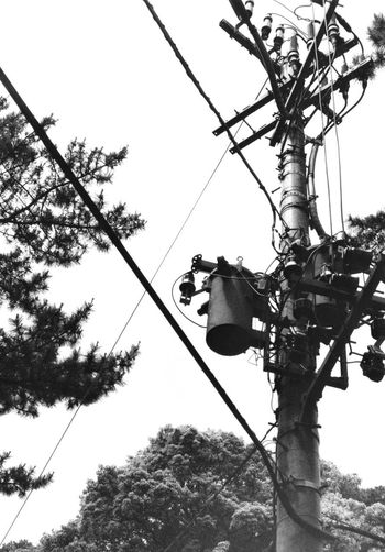 Analogue Photography Cable Clear Sky Day Electricity  Film Photography Japan Photography Japanese Jungle Jungle Low Angle View Monochrome No People Pole Power Line  Power Supply Signal Sky Technology Tree