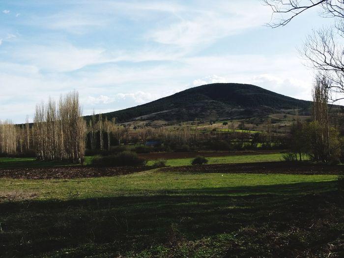 Doğa Ile Iç Içe Huzur♥ Yeşillik 👟 Tree Water Agriculture Rural Scene Irrigation Equipment Field Sky Grass Cloud - Sky Landscape