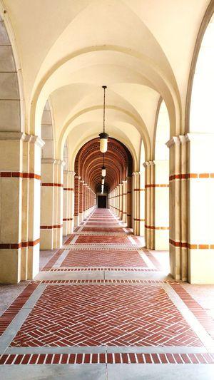 Corridor in rice university