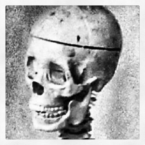 Art Drawing Skull Bnw Skeleton Artclass Skullcap  Bnw_life Bnw_captures Bnw_life_invite Cm_statuesandrelics Bnwalma Bnw_stingray Power_group Power_bnw Bnw_photos DrawingRoom Challenge_monkeys Nocolorneeded