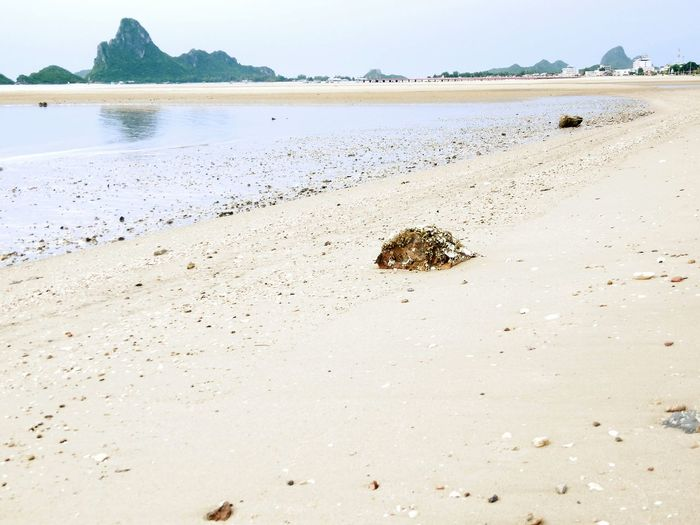 Beach Sea Landscape Nature Sand Outdoors Fossil Thailand