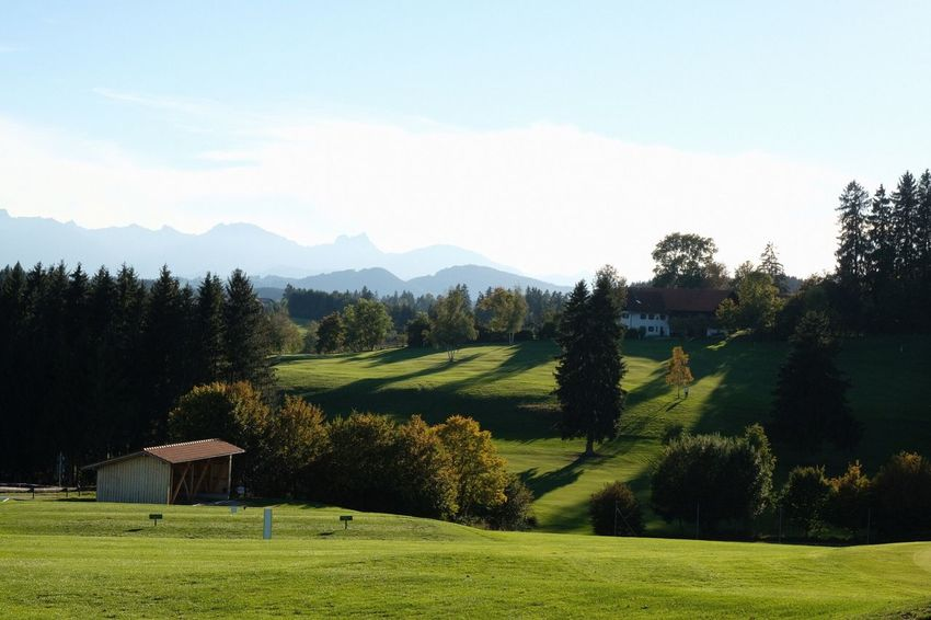 Golf Course Pfaffenwinkel Bavarian Landscape Plant Tree Grass Green Color Beauty In Nature Scenics - Nature Landscape Sky Mountain Tranquil Scene Land