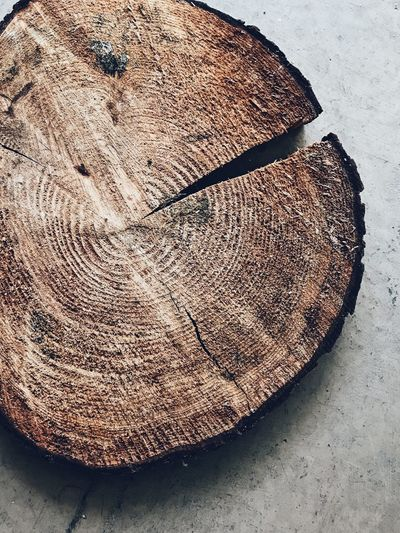 Rings Detailed Rugged Textures In Nature Textures and Surfaces Strength Strong Natural Light Cut Rustic Beauty Rustic Tree Trunk Age Rings No People Close-up Pattern Day Still Life High Angle View Nature Textured  Natural Pattern Wood - Material