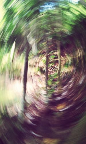 I Don't have any idea how this pic came up. If I try to do it again probably I can't. Nature TheMinimals (less Edit Juxt Photography) Walking In The Woods Life In Motion Time Warp Tunnel Capturing Movement