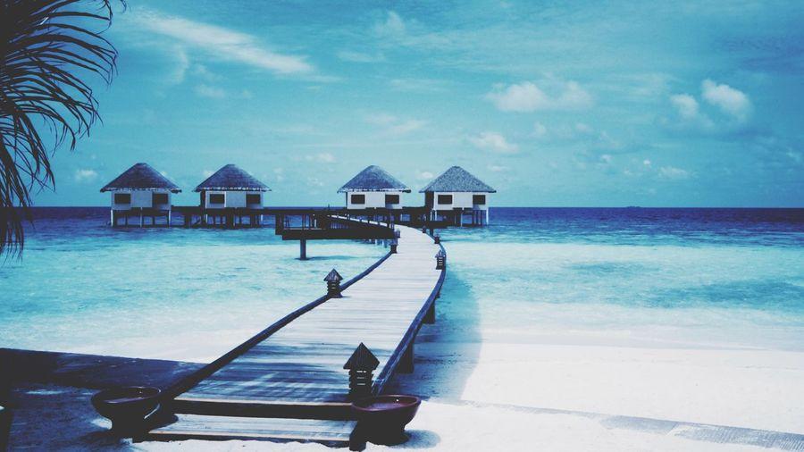 Maldives miss there so bad Dailyphoto Photoofday Snapshot
