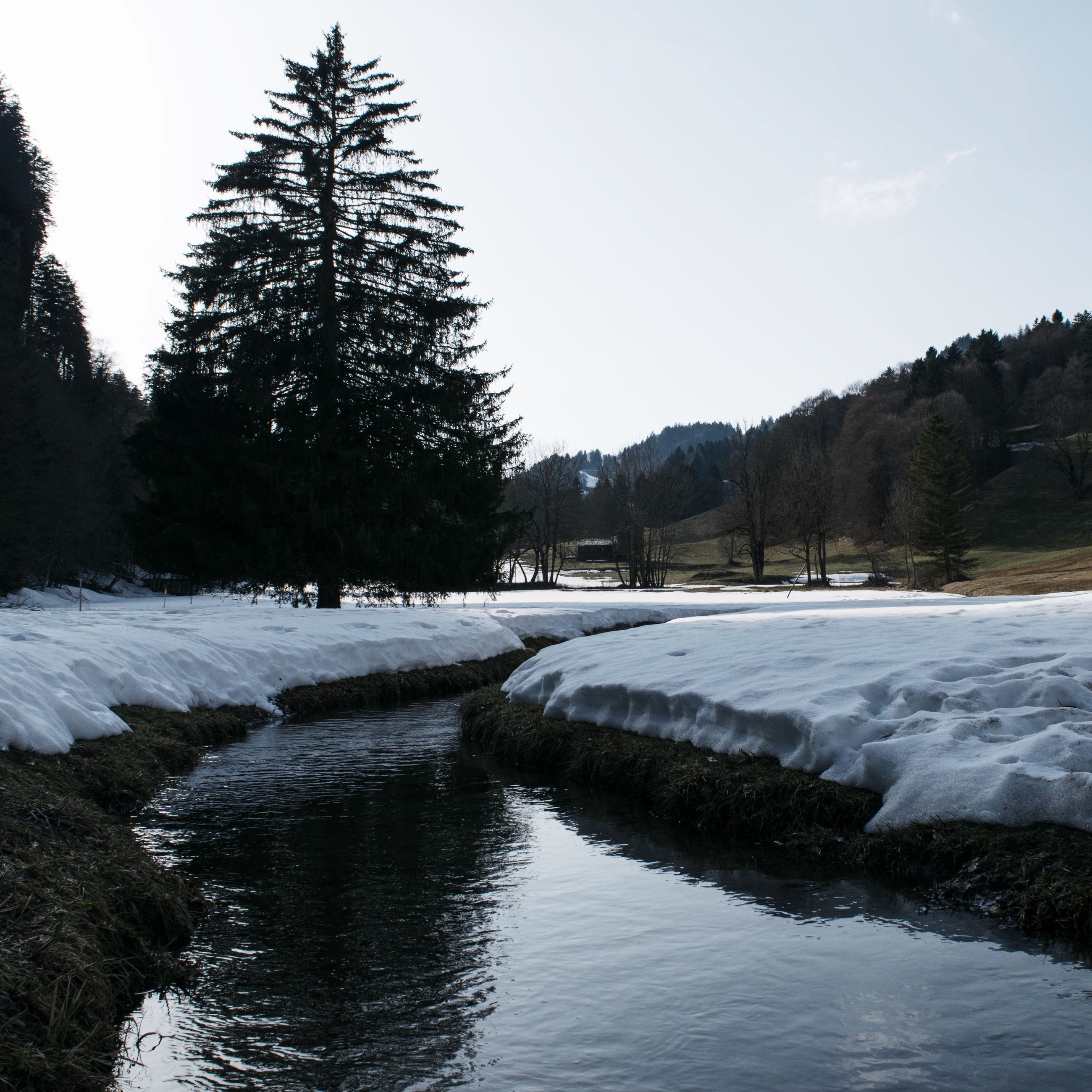 tree, snow, winter, cold temperature, water, tranquil scene, tranquility, scenics, beauty in nature, nature, season, clear sky, sky, river, landscape, lake, waterfront, frozen, day, mountain