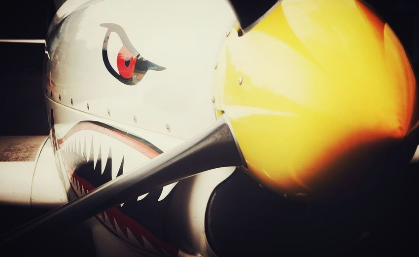 ..sky shark.. Airplane Airshow Air Force Militery Militerindonesia Propeller Airplane Eye Shark Face Photooftheday Close-up Sonyimages📷 Sonyimages Sonya58 Sonyphotography Sonyalpha Sonyindonesia Air Vehicle The Week On EyeEm