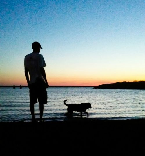 Creative Light And Shadow Shadowplay Sunset Silhouettes Mansbestfriend Playing Onthebeach