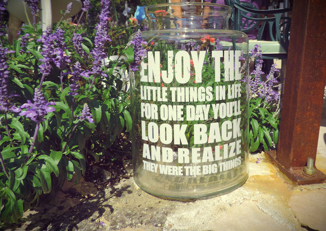 Beauty In Nature Big Things Blossom Day Enjoy Enjoy Life Enjoy The Little Things Enjoying Life Flower Fragility Freshness In Bloom Jar Little Things Mind  Outdoors Quote Quotes Reflections Springtime Think Thinking Thinking About Life Vibrant Color Wisdom