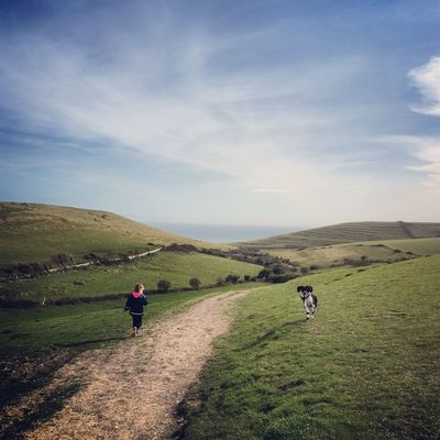 The rolling Dorset hills! Happy Poole Harbour Poole Poole, Dorset Dorset Purbeck Purbecks Dog Walking Landscape Hill Hills Worth Matravers Winspit Countryside Sprocker Spaniel Dog View Rollinghills Path Followthepath