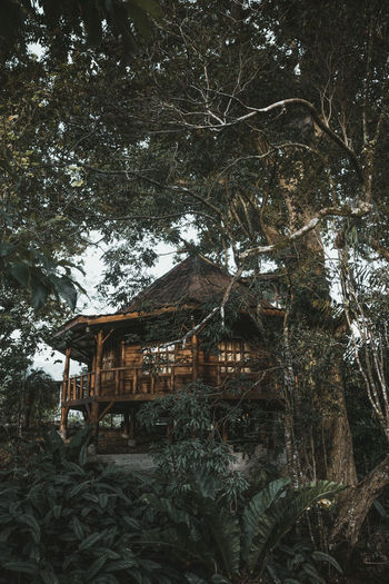 Nature Nature Photography Architecture Building Building Exterior Built Structure Cold Temperature Day Forest House Land Nature Nature_collection Naturelovers No People Outdoors Plant Tranquility Tree Wood - Material