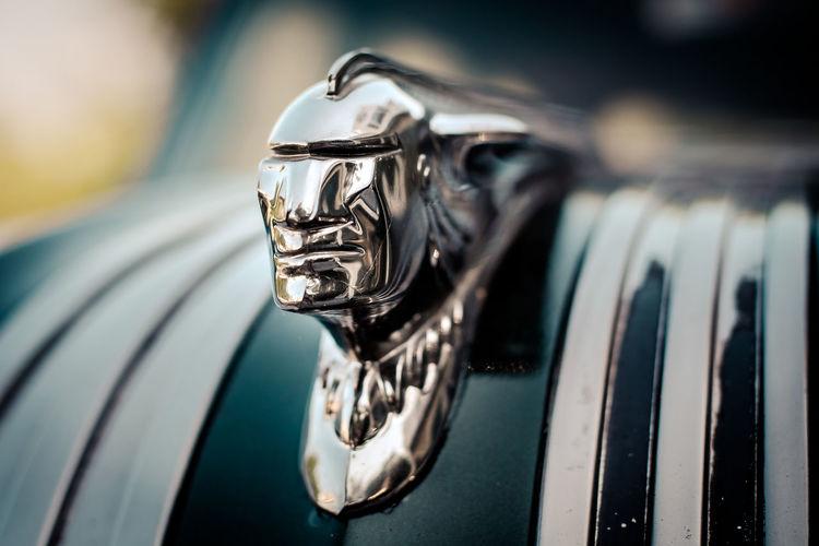 Chieftan Classic Car Maine Chrome Close-up Hood Ornament Metal Vintage Cars