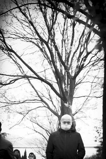 tree-man with