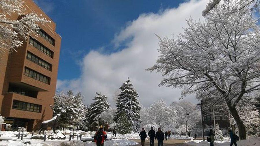 Finally My University.. Mtu Michigantech Noedit Nofilter
