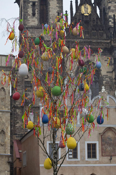 Easter Easter Eggs Easter Ready Easter Tree Oldtownsquare Streetphotography