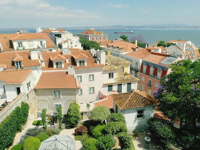 Garden, sea and inbetween Garden Urban Green Cityscape Residential Building Tree Sky Architecture Building Exterior Residential District Settlement Tiled Roof  Crowded TOWNSCAPE Roof Tile Roof Rooftop Old Town