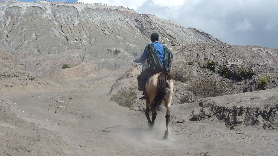 Horseman Adult Beauty In Nature Bromo Volcanic Complex Day Desert Domestic Animals EyeEmNewHere Horse Horse Riding Landscape Lifestyles Mammal Men Mountain Mountains Nature One Animal One Man Only One Person Outdoors People Real People Rear View Scenics Wasteland